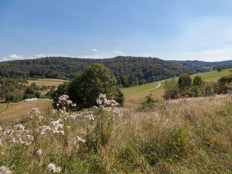 Berglen Landschaft   - © Quelle: Agentur arcos