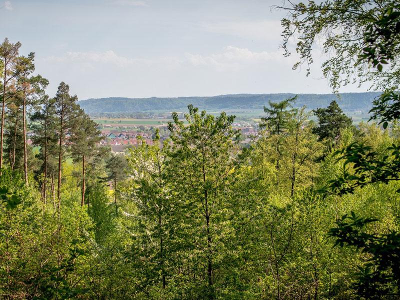 Ausblick auf Michelfeld   - © Quelle: Gemeinde Michelfeld