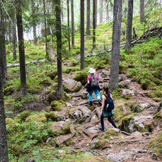 Savottapolku Trail has some very rocky parts, so sturdy footwear is necessary.