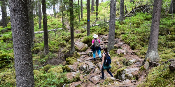 Savottapolku Trail has some very rocky parts, so sturdy footwear is necessary.