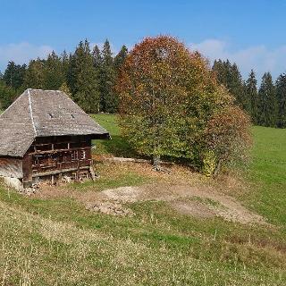 Einsames Bauernhaus im Jostal