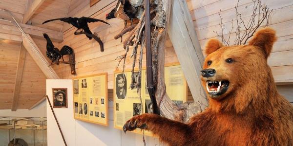 Muzej-zgodbe Trente