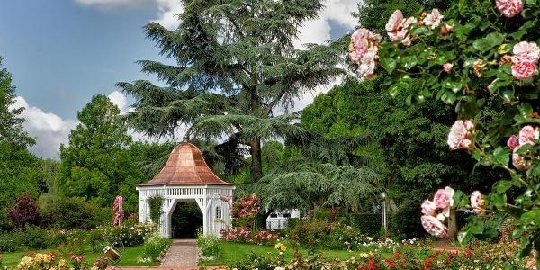 Hochzeitspavillon im Rosengarten