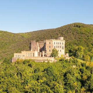 Hambacher Schloss Autor Rolf Schädler