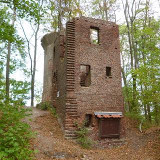 Ruine Allerburg