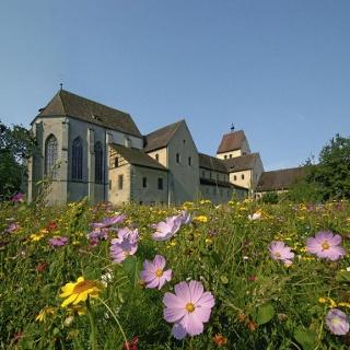 Münster Reichenau