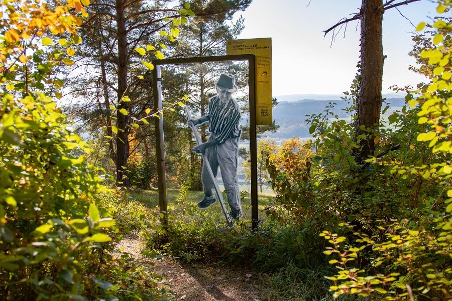 Die Donaupforten - Felsenweg