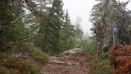 Keima, Vuokatinvaara