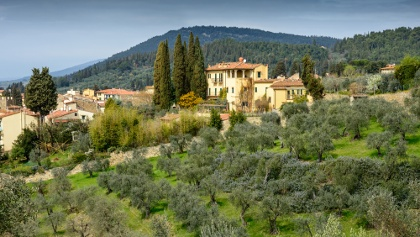 Olive groves and villas in Settignano