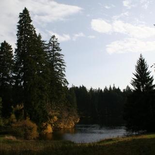 Ochsenbacher Teich