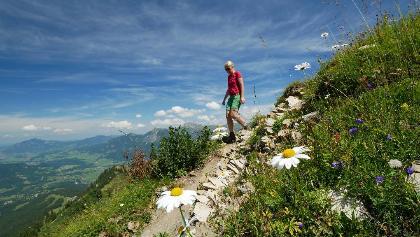 Bergpfad zwischen Fellhorn und Söllereck
