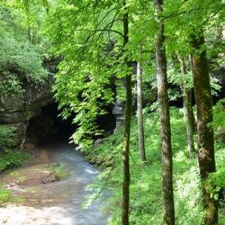 Russell Cave in Spring
