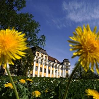 Schloss Tettnang
