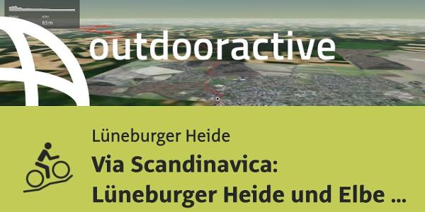 Mountainbike-tour in der Lüneburger Heide: Via Scandinavica: Lüneburger Heide und Elbe von ...
