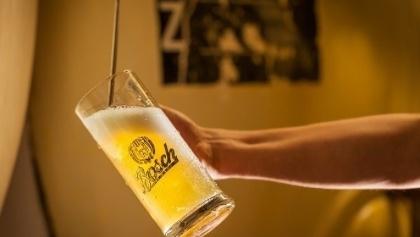 Pils vom Fass Brauerei Bosch