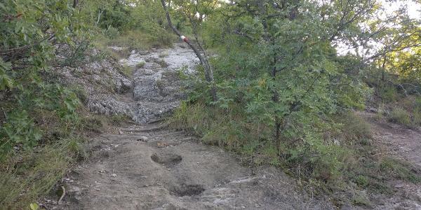 Anstieg zum Monte Mauro