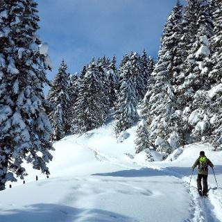 Auf dem Gantrisch Panorama Trail.