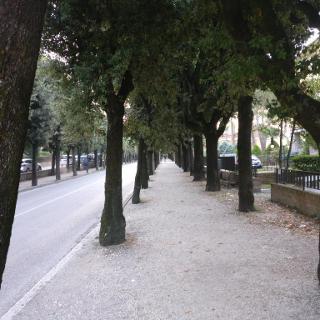 Gubbio -