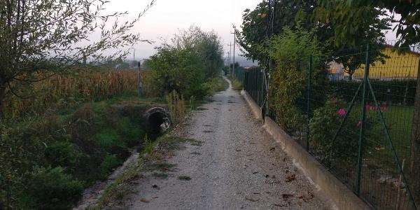 Gerade nach Cipolleto