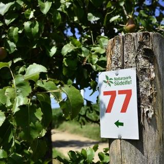 Markierung am Weg - Nr.77