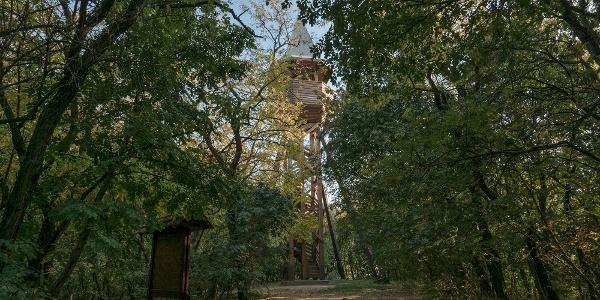 Panoráma-kilátó a Pákozd-Sukorói Arborétumban