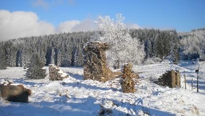 Tal der Königsmühle