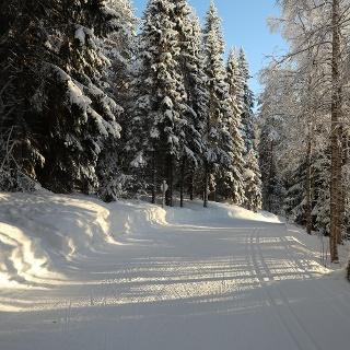 Latu, Kettumäen lenkki 10 km, Vuokatti Finland
