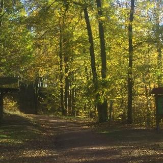 Schutzhütte an der Weinstraße zum Abzweig in die Landgrafenschlucht