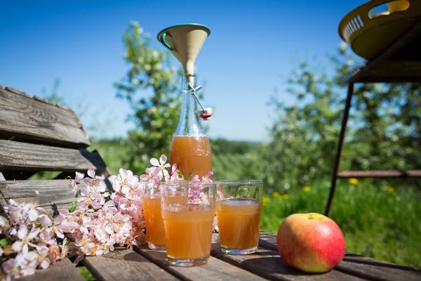 Apfelmost in Schweden