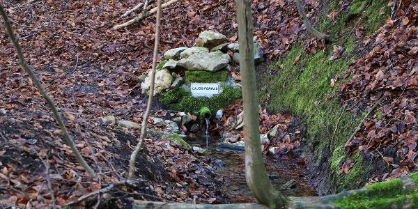 A völgyben több foglat forrás is fakad