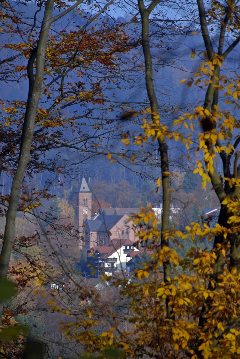 Falkenstein-Trail