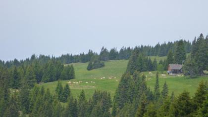 Koralpe-Blick zur Steinberger Hütte