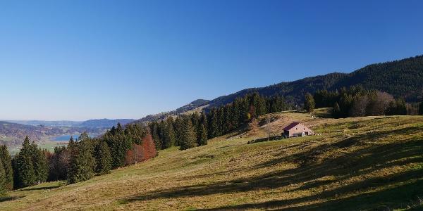Hochsiedel-Alpe