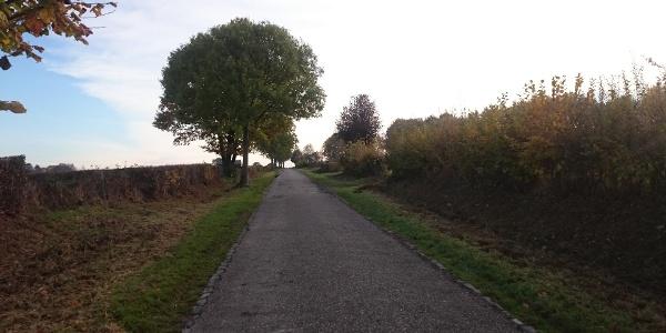 Vennbahn-Anschluss Eupen-Raeren