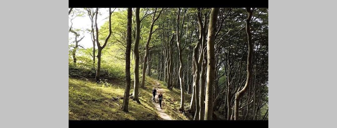 Hiking in Skåne, Sweden
