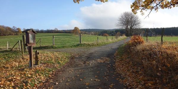 Herbststimmung auf dem Dilldappenweg