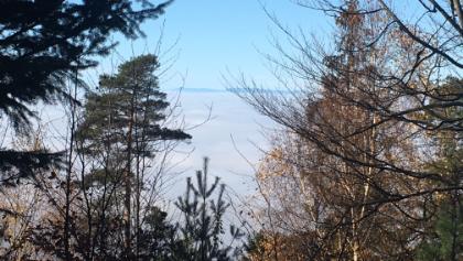 Nebelmerr über Sinzheim