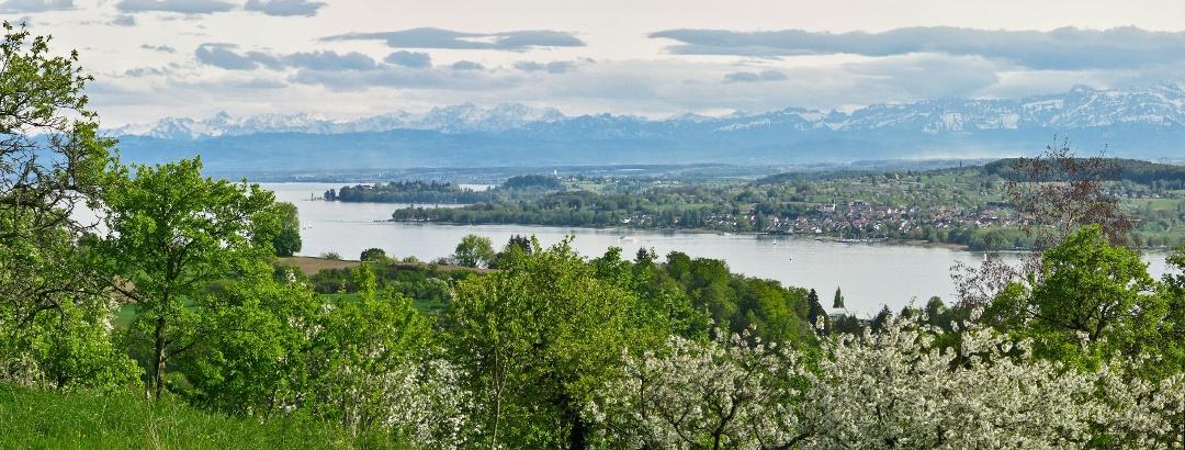 Blick bei Hödingen auf den Bodensee