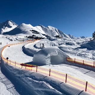PISTENBOCK® Strecke - Ahornbahn / Mayrhofen / Zillertal