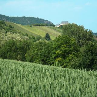 VitalTour, Alsenztal zur Ebernburg
