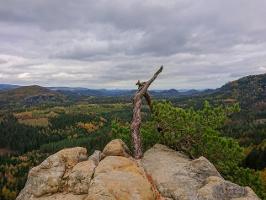 Foto An der Aussichtsstelle Obere Affensteinpromenade