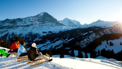 Bussalp Grindelwald