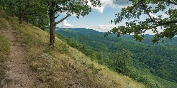 Ereszkedőben a Magyar-hegyről