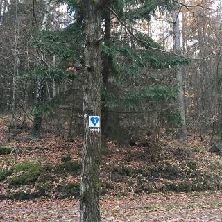 Herzweg Bad Laasphe blau 3