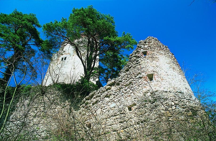 Burgen im Hegau B1 - Von Stahringen zur Ruine Alt Bodman