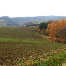 Herrliche Weitsichten vom Geopfad Tuffsteinweg
