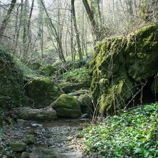 A vadregényes Sárkány-szakadék
