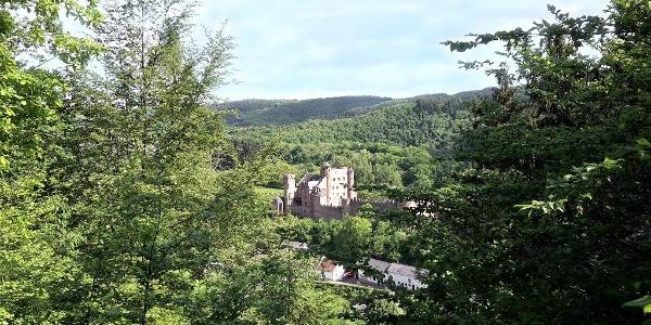 Blick auf Schloss Hamm Wanderweg Nr. 22 des Naturpark Südeifel