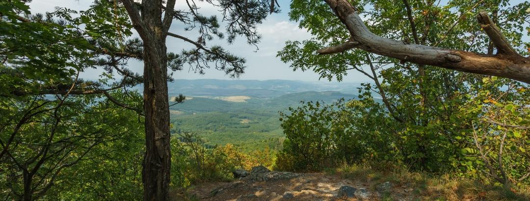 Kilátás az Ágasvár oldalcsúcsáról