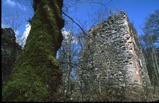 Burgruine Neuhewen (im Volksmund Stettener Schlössle genannt)